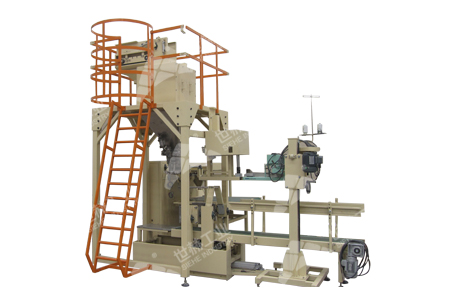 Top open Bag Auto Packing Machine typical case